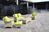 Insieme selettivo esterno del sofà della mobilia 3PCS del rattan UV di resistenza