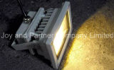 2 jaar Warranty IP65 10W LED COB Flood Light (JP83710COB)