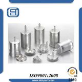 Boîtier de filtre à essence de véhicules de qualité d'usine d'OIN de la Chine