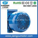Motor elétrico concreto assíncrono trifásico com os certificados do CCC e do ISO