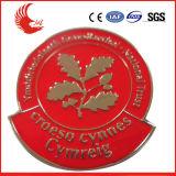 Emblema feito sob encomenda gravado venda por atacado da lembrança