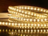 SMD3014 높은 루멘 LED 밧줄 빛 LED 지구