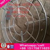 De rijke Motor 220V AC van de Ventilator van de Ventilator van de Ventilatie van de Buis van de Airconditioning van het Plafond van de Vin Industriële As