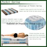 2016熱いSales 7zone Pocket Spring Mattress