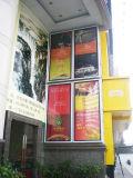 مركز تجاريّ جدار يعلى ألومنيوم مادّيّة إطار نحيلة [لد] [ليغت بوإكس]