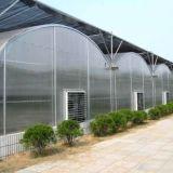 판매를 위한 농업 다중 경간 필름 녹색 집