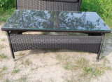 Présidence en osier de structure de Kd de meubles de rotin de jardin pour extérieur (MTC-055)