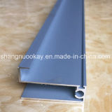 Wardrobe를 위한 높은 Quality Anodized Aluminum Profile