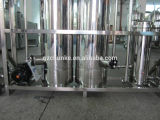Strumentazione di trattamento delle acque del sistema osmosi d'inversione/del RO