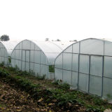 Het commerciële Goede Gebruikte Groene Huis van de Tunnel voor Verkoop
