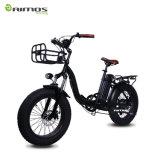 شاطئ طرّاد ثلج درّاجة كهربائيّة
