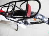 スマートな電気バイクを折る20inch 36V 250W