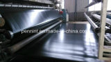 HDPE Geomembrane、GeomembranesのタイプおよびHDPE物質的なASTMのHDPE Geomembrane