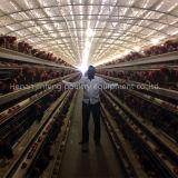 Gaiola da galinha das aves domésticas do frame da bateria para o uso da exploração agrícola