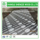 Manufactured professionnel 18mm Logo Film Faced Plywood