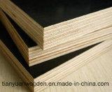 a película de 18mm enfrentou a madeira compensada com venda quente da alta qualidade