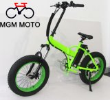 500W Folding Electric Bicycle mit 20icnh Tire