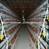 Автоматическое оборудование птицефермы системы клетки цыпленка