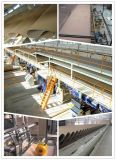 Qualitäts-Wellpappen-Pappe-Produktionszweig