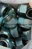 Écrous de blocage en nylon M39 de la garniture intérieure DIN985