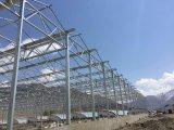Multi тип парник Venlo пяди листа поликарбоната с стальной структурой