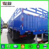 [هووو] [6إكس4] شحن شاحنة [سنوتروك] 40 طن ثقيلة شحن شاحنة شاحنة