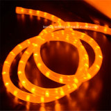 220V/12V/24V 알맞은 가격을%s 가진 최고 도매 Y2 LED 밧줄 빛