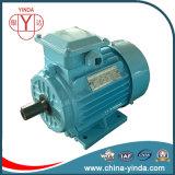 Трехфазный мотор Y2: Рамка чугуна IEC Tru-Метрическая - Tefc (IP55) -