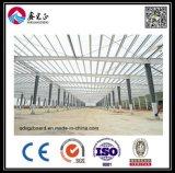 Atelier de structure métallique de modèle de construction (BYSS011404)