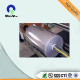 Vácuo do PVC da folha do PVC que dá forma à folha