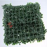 Boxwood de Sunwing que ajardina a parede verde artificial da decoração do jardim