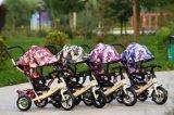 China-Baby-Spaziergänger scherzt Dreiradroller-Kind-Fahrrad-Fahrrad