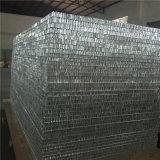 Aluminium de panneau de nid d'abeilles (heure P050)