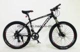 """Bicicleta, 26 """" Suteng, Dic-Freio hidráulico, bicicleta de montanha com Shimano 24s"""