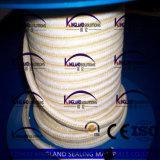 (KLP216) Imballaggio Braided di Aramid PTFE