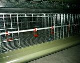 Camp/cage automatiques de couche de poulet pour le grilleur