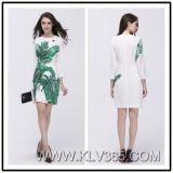 Herbst-Winter-Baumwollform-Frauen-lange Hülse gedrucktes beiläufiges Kleid
