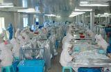 Filtro batterico medico dalla macchina di aspirazione dell'espettorato