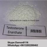 Aufbauendes Steroid-Testosteron Enanthate Puder-Hormon-Rohstoff für Verkauf