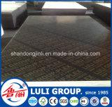 Molde do concreto da prova da água do grupo de Luli