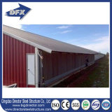 Prefab Poultry Farm / Farm De Frango Chicken Poultrys Breeding House