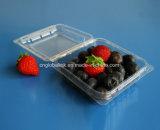 Contenitore di imballaggio del mirtillo per il contenitore impaccante di frutta di plastica da 125 grammi
