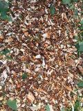 목제 Chipper 잎 슈레더 6.5 HP는 가스를 발산한다