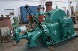 Tipo idroelettrico di Turbina-Francis dell'acqua