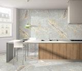 600X600 3D Inkjet antideslizante azulejo de la porcelana por piso (HP66003)