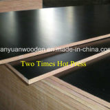 Fabricante de Shandong de madera contrachapada Shuttering para la construcción