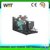 conjunto de generador del gas natural 20-120kw con Ce, aprobación del SGS