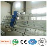 Cage galvanisée à chaud de couche de poulet d'oeufs de matériel de volaille de norme internationale