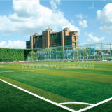 인공적인 뗏장 축구 합성 물질 잔디 10 년 보장
