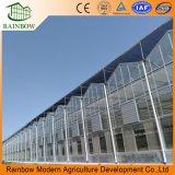 マルチ目的のVenloの花の植わることのためのガラス農業の温室